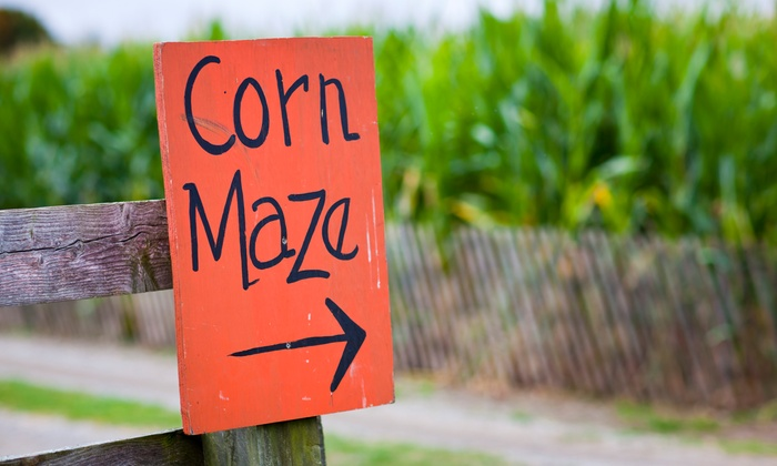 Jacob's Corn Maze - Traverse City: Admission for Two or Four to Jacob's Corn Maze (Up to 38% Off)