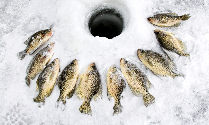 Oziles' in Orleans - Orleans: C$70 for a Weekday Ice-Hut Rental with Wood, Bait, and Rods from Oziles' (C$135 Value)
