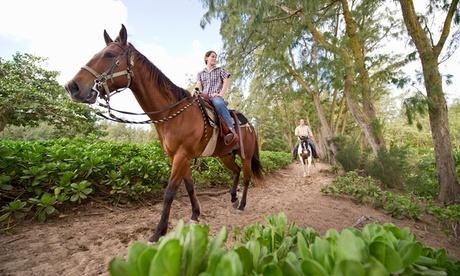 Paseo a caballo para 2 con opción a clase de equitación o paseo a caballo para 4 desde 19,90€ en Centro Hípico La Hakima Oferta en Groupon
