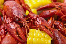 Up to 48% Off Food and Drink at The JC Crab   at The JC Crab, plus 6.0% Cash Back from Ebates.