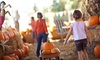 ECO Center's 3rd Annual Fall Festival - The Plains of Hartford: Corn Maze or Haunted Trail for Two or Four at ECO Center's 3rd Annual Fall Festival (Up to 37% Off)