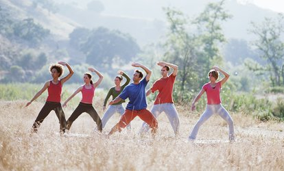 image for $19.50 for 4 Tai Chi Classes at Tai Chi for Everybody - Fresno ($40 Value)