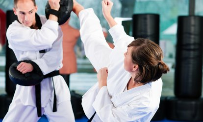 $15.50 for a Month of Unlimited <strong>Martial-Arts</strong> Classes at National Karate ($150 Value)