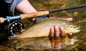 Les étangs de Romainville: Une demi-journée de pêche à la truite avec location de la canne pour 1 à 4 personnes dès 19 € aux étangs de Romainville