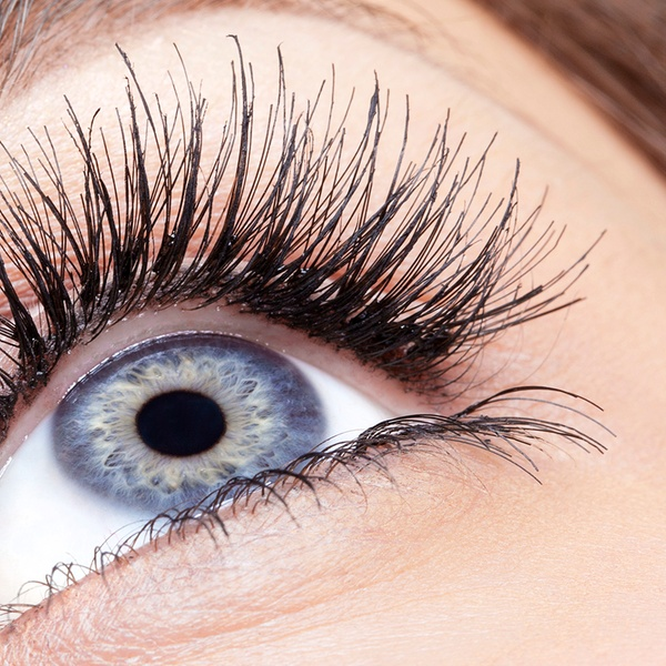 b2d40d6b819 Eyelash Extensions - Majesty Beauty Centre | Groupon