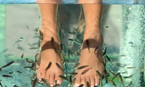 Yvonne's Day Spa: Fish Therapy with Optional Pedicure at Yvonne's Day Spa (Up to 53% Off)