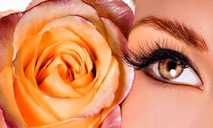 Nails & Spa: Wimpernverlängerung mit 60 oder 200 Wimpern pro Auge, optional mit Serum und Mascara, bei Nails & Spa ab 39,90 €