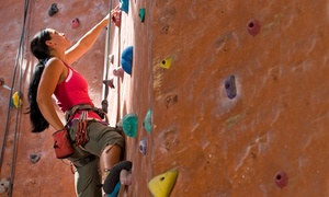 City Climb: Intro-to-Rock-Climbing Class for Two or One-Day Climbing Pass for Two or Four at City Climb (Up to 44% Off)
