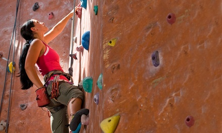 One-Day Rock-Climbing Pass with Gear Rental for One or Two at Climbmax Climbing Gym (Up to 43% Off)