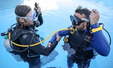 Corso brevetto PADI Scuba Diver a 19,90euro