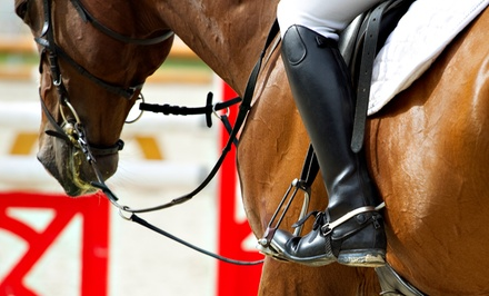 $22 for $40 Worth of Horseback Riding — Specially Designed Stables LLC