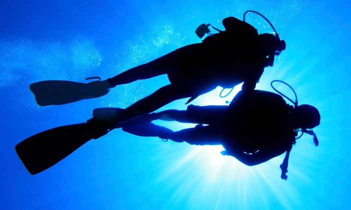 Deep Blue Scuba - Deep Blue Scuba: Refresher Course or Open-Water Scuba-Certification Class for One or Two at Deep Blue Scuba (Up to 54% Off)