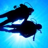 Up to 48% Off Scuba-Diving Class