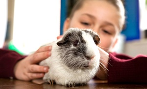Pawsitively Pets For Kids: CC$129 for One Weekday Hands-On Animal Event or Party with Pawsitively Pets For Kids (CC$195 Value)