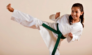 AmeriKick Martial Arts - Staten Island: Two Weeks or One Month of Kids' Martial-Arts Classes with a Uniform at AmeriKick Martial Arts (Up to 85% Off)