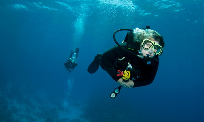 Aaron's Dive Shop - Oahu: Three-Hour Scuba Trip for a Certified or Beginner Diver from Aaron's Dive Shop (Up to 43% Off)
