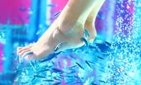 Fußpflege-Paket mit Pediküre, Fish-Spa und Fuß-Massage bei FishSpa Leonberg im Sanitätshaus Arnold (39% sparen*)
