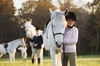 Up to 69% Off on Horse Back Riding - Recreational at Cressbrook Stables at Rolling Hills Equestrian Center