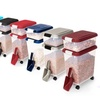 Pet-Food Bins and Scoops (3-Piece)