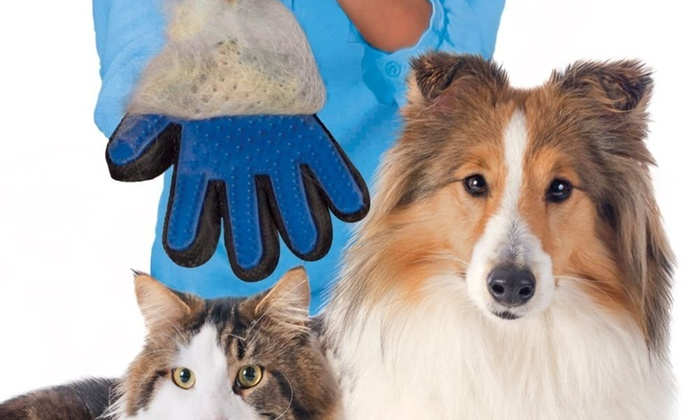 Pet Grooming And De Shedding Brush Glove