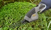 CLOSEOUT SURPLUS & SALVAGE INC: Sun Joe Cordless Handheld Grass Cutter and Hedge Shrub Trimmer
