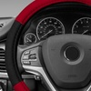 Modernistic Steering Wheel Cover and Seat Belt Pads