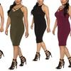 Bodycon Dresses in Junior Plus Sizes