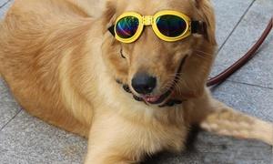 Adjustable Pet Sunglasses at Adjustable Pet Sunglasses, plus 6.0% Cash Back from Ebates.