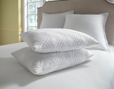 Quilted Memory-Foam Pillow (2-Pack) at Quilted Memory-Foam Pillow (2-Pack), plus 9.0% Cash Back from Ebates.
