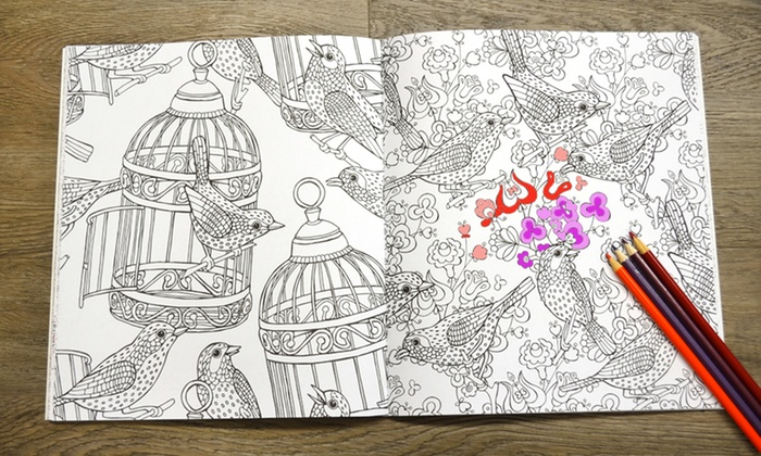 Adult Coloring Books with Colored Pencils (28-Piece) | Groupon