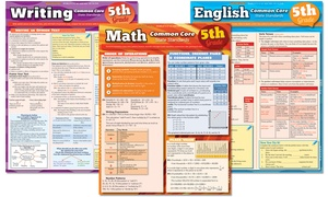 Common Core Laminated Study Guide