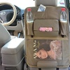 Vehicle Back Seat Organizer