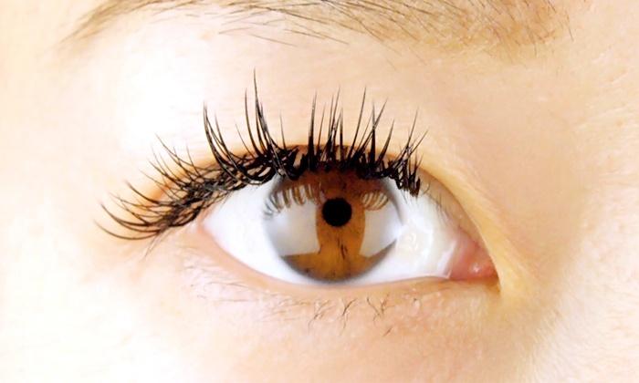 まつ毛エクステンションサロン ライッシュ - laysh eyelash salon: 【最大51%OFF】上品な目元に≪上まつげエクステ(セーブル)+オフ/120本 or 140本≫ @まつ毛エクステンションサロン ライッシュ