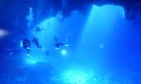 透明度が高く、神秘的な夏の深海へ。ラクラク日帰りツアー≪体験ダイブ/1ダイブ or 2ダイブ≫ @SORA DIVE SHOP