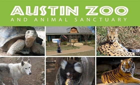 Austin Zoo Coupons. Austin Zoo Discounts: Public Transportation Promotion: A great deal of places offers you a rebate in the event that you ride public transit. Occasionally it's as much as three bucks off the pass price. Call and confirm.