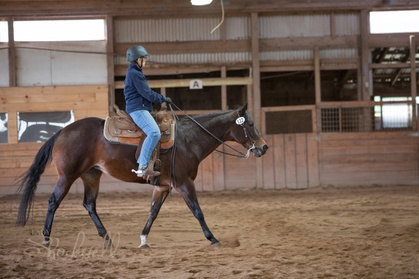 Up to 39% Off on Horse Back Riding - Training at White Birch Farm
