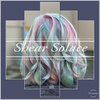 Up to 35% Off on Salon - Hair Color / Highlights at Shear Solace