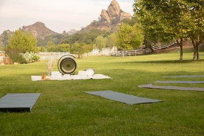 Up to 25% Off on Meditation Session at Salvaje Malibu