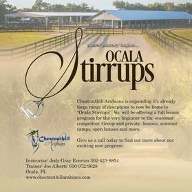 Up to 53% Off on Horse Back Riding - Training at Ocala Stirrups