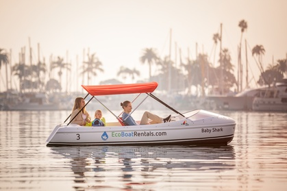 Up to 25% Off on Tour - Boat at Eco Boat Rentals