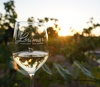 Up to 50% Off on Restaurant Specialty - Wine Tasting / Flight at Lorimar Vineyards and Winery
