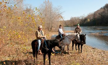 Up to 50% Off on Horse Back Riding - Recreational at Rivers Bend Ranch