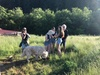 Up to 50% Off on Farm Tour at Hidden Lake Ranch
