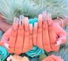 Up to 38% Off on Nail Spa/Salon - Shellac / No-Chip / Gel at Hot Girl Nails