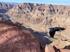 Up to 42% Off on Tour - Bus at ITravel USA