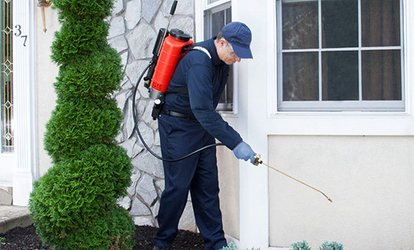 image for 50% Off Pest Control Service - General
