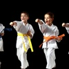 $50 Off $200 Worth of Martial Arts / Karate / MMA