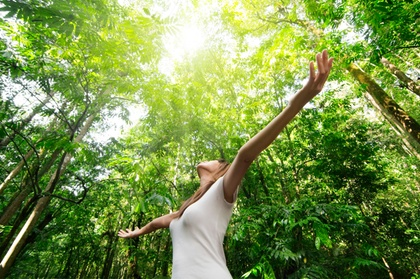 90-Minute Meditation Session including Energy Healing & Acupressure from Authentic Dream Building (50% Off)