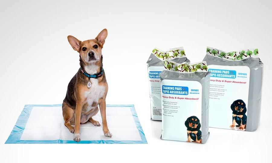 Groupon Shopping: Pack de 20, 50 o 100 toallas de entrenamiento Puppy Pads protección del hogar en tamaño a elegir. Incluye despacho