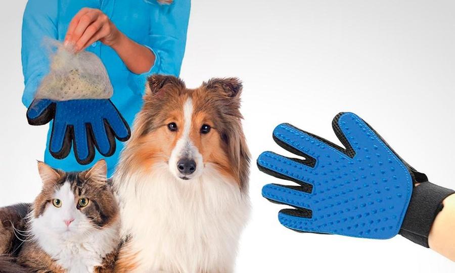Shopping Colombia: Guante cepillo para perros y gatos plástico 5 dedos True Touch. Incluye envío